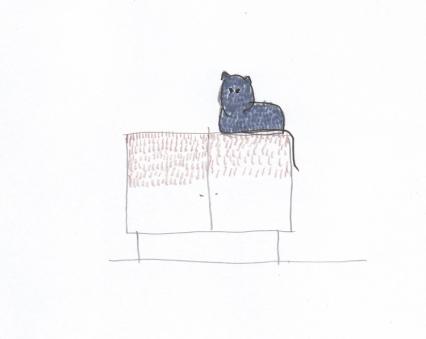 cheshire sketch 01