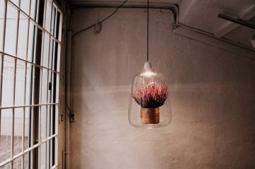 lightovo luminaire plante