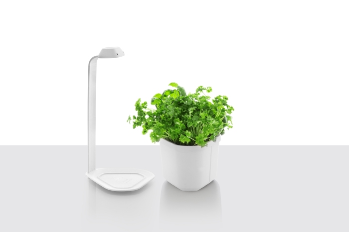 Lampe Genie, blanc, de Tregren