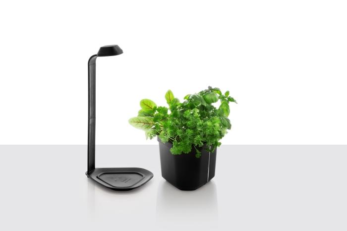 Lampe Genie, noire, de Tregren