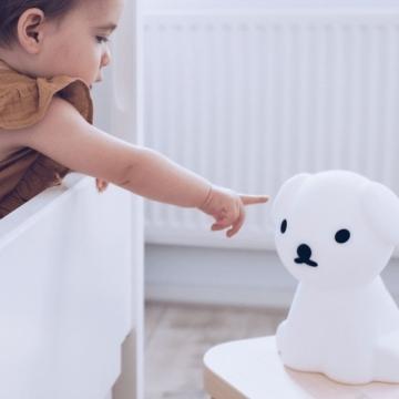 Adoptez une veilleuse pour votre petit garçon !